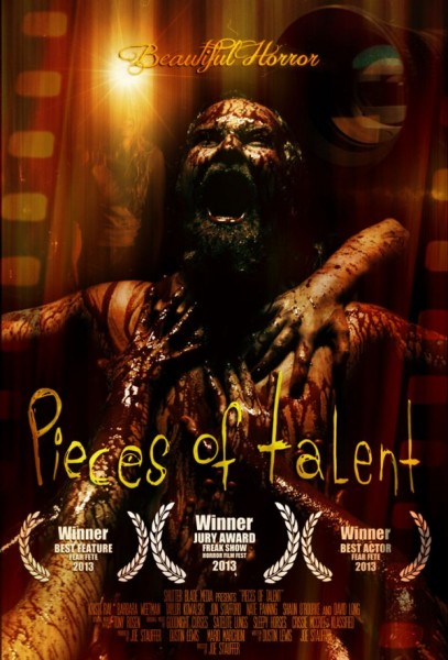 Pieces of Talent (2014) DVDRip
